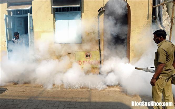 zika Miền Bắc Ấn Độ lại bùng phát dịch Zika