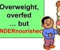 Vì sao trẻ béo phì vẫn bị suy dinh dưỡng?