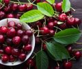Quả cherry tưởng vô hại nhưng ăn như thế này sẽ gây ngộ độc