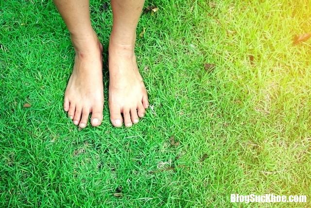 Di bo chan tran Những lợi ích không thể ngờ khi bạn đi bộ bằng chân trần